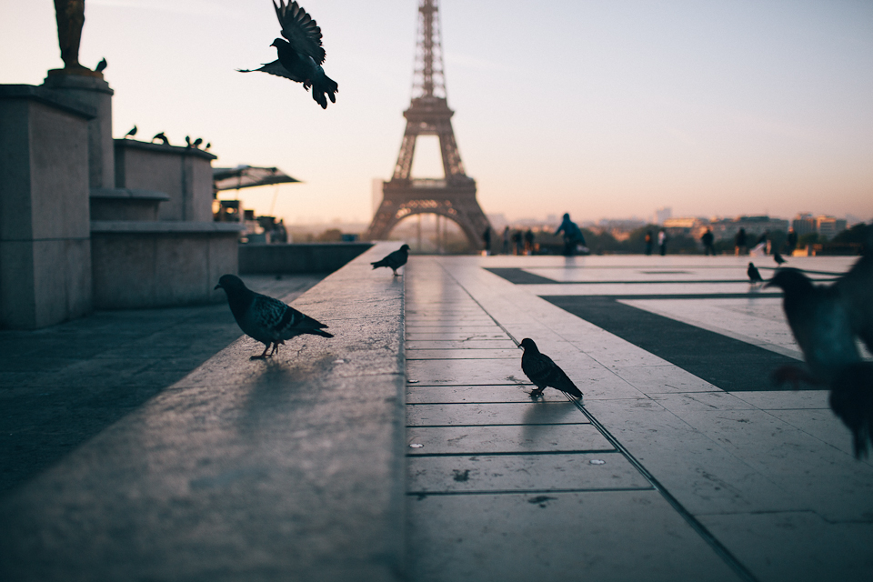 Ryanair skrydžiai į Paryžių